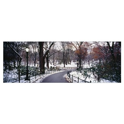 Walkway in a park, Central Park, Manhattan, New Yo Poster