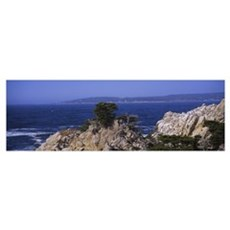 Rock formations on the coast, Point Lobos State Re Poster
