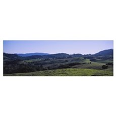 High angle view of a rolling landscape, Sonoma Cou Framed Print
