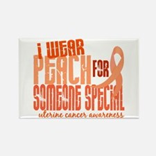 I Wear Peach 6.4 Uterine Cancer Rectangle Magnet