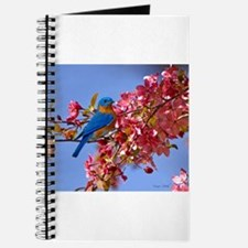 Bluebird in Blossoms Journal