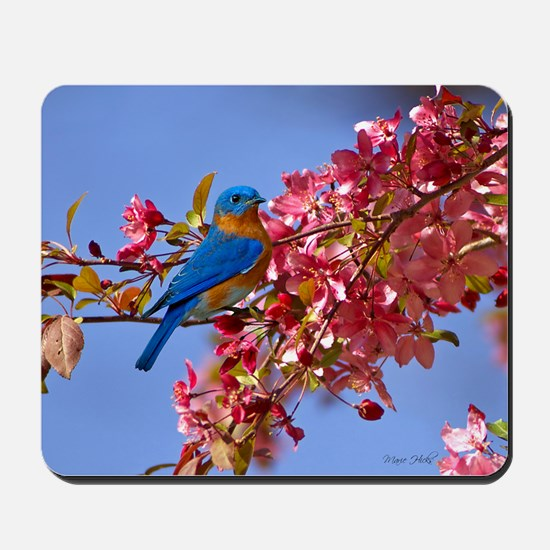 Bluebird in Blossoms Mousepad