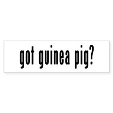 GOT GUINEA PIG Bumper Sticker