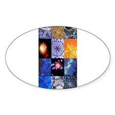 Blue and Gold Stars photo col Decal