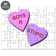 Boys R Stupid Puzzle