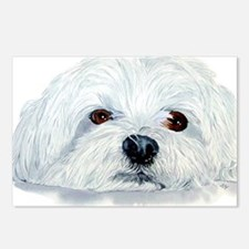 Bogart the Maltese Postcards (Package of 8)