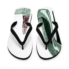 Green Stiletto Shoe and Lipst Flip Flops
