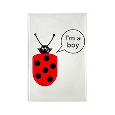 Ladybug I'm a Boy Rectangle Magnet