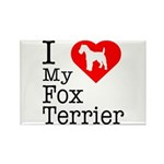 I Love My Fox Terrier Rectangle Magnet