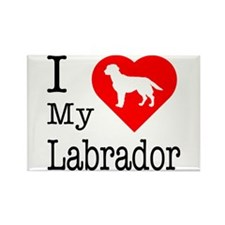 I Love My Labrador Retriever Rectangle Magnet