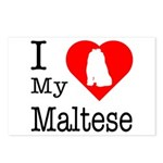 I Love My Maltese Postcards (Package of 8)