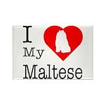 I Love My Maltese Rectangle Magnet (10 pack)
