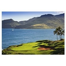 Palm trees in a golf course, Kauai Lagoons, Kauai, Canvas Art