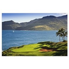 Palm trees in a golf course, Kauai Lagoons, Kauai, Poster