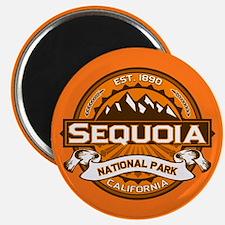 Sequoia Pumpkin Magnet