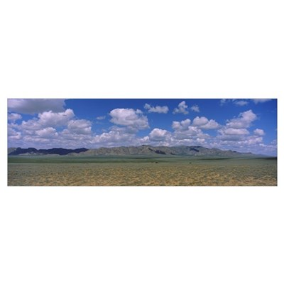 Grass field in front of a mountain range, Karakoru Poster