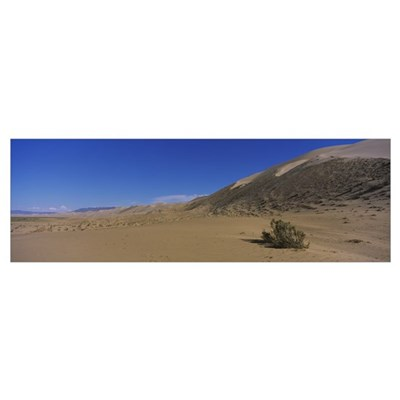 Sand dunes in the desert, Gobi Desert, Independent Poster