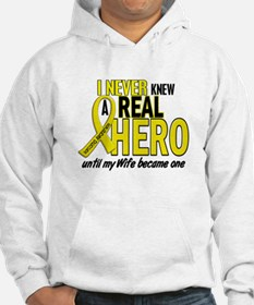 Real Hero Sarcoma Jumper Hoody