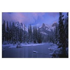 Panoramic view of snowcapped trees and mountains,