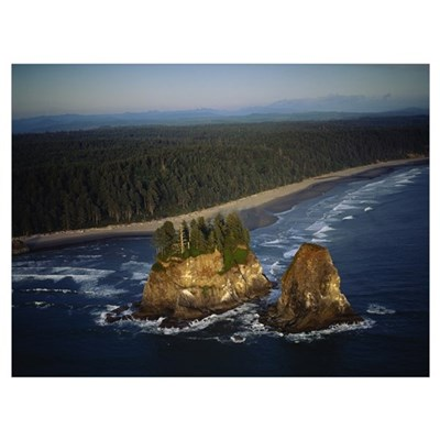 Aerial view of a forest along a coastline, Olympic Framed Print