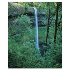 Waterfall in a forest, Silver Falls State Park, Ma Poster