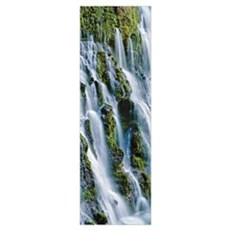 Waterfall in a forest, Burney Falls, McArthur-Burn Poster