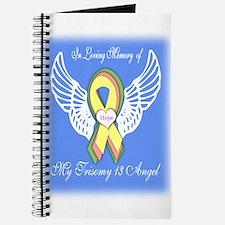 Trisomy 13 Angel boy Journal