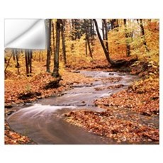 New York State, Erie County, Emery Park, Stream of Wall Decal