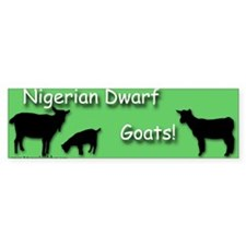 Nigerian Dwarf Goats! Green Bumper Bumper Sticker