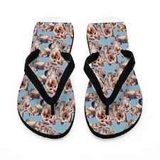 Yorkie Flip Flops