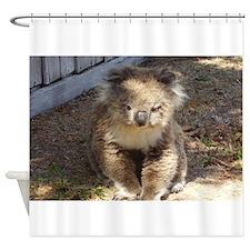 Cute Wild Koala Shower Curtain
