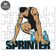Sprinter Puzzle