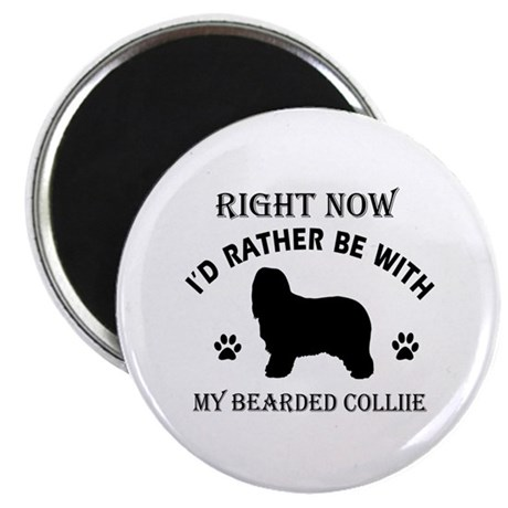 "Bearded Collie Dog Breed Designs 2.25"" Magnet (100"