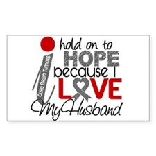 I Hold On To Hope Brain Tumor Decal