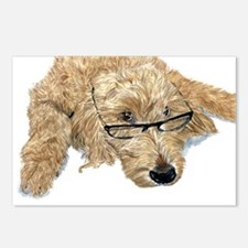 Goldendoodle Stella Postcards (Package of 8)
