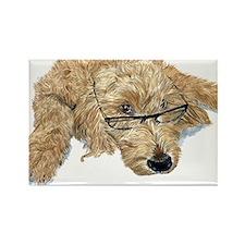 Goldendoodle Rectangle Magnet (100 pack)