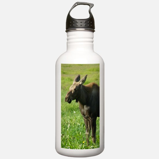Cow Moose #01 Water Bottle