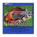 JM11 Mandolin String Tile Coaster
