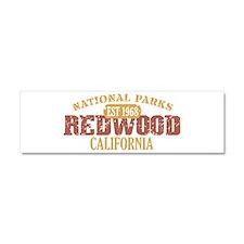 Redwood National Park CA Car Magnet 10 x 3