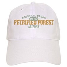 Petrified Forest Arizona Baseball Cap