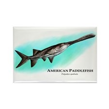 American Paddlefish Rectangle Magnet