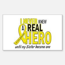 Real Hero Sarcoma Sticker (Rectangle)