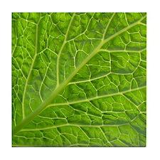 Green leaf Tile Coaster