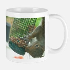 Squirrel on bird feeder Mug