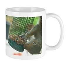 Squirrel on bird feeder Mug