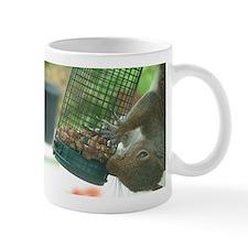 Squirrel on bird feeder Small Mug