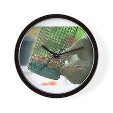 Squirrel on bird feeder Wall Clock