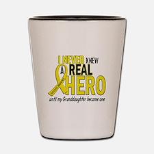 Real Hero Sarcoma Shot Glass