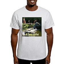 Mt. Cheaha State Park, AL T-Shirt