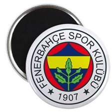 Fenerbahce Magnet